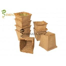 Торфени саксии за разсад – лесен начин за засяване на семена - 8 бр. в комплект 5/5/H5 см