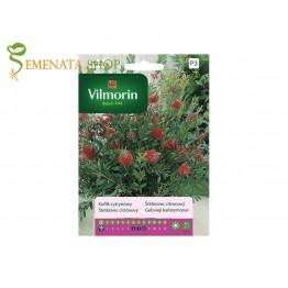 Семена на Калистемон - Callistemon citrinus