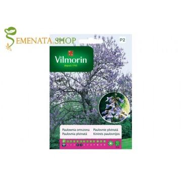 Семена на Пауловния Томентоса - Императорско дърво