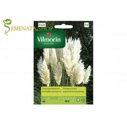 Семена на Пампаска трева (бяла)