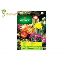 Семена на Кактуси микс от Вилморин