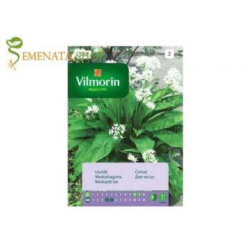 Семена на див чесън или Левурда (мечи лук) - зеленчук с наситен аромат и изключителна полза