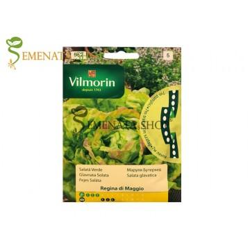 Семена на маруля на ленти Вилморин