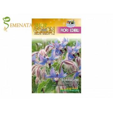 Семена на Пореч (Бораго) - ядливи цветове