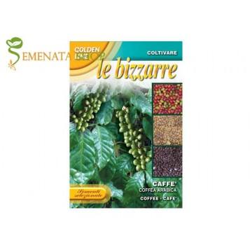 Семена на Кафе Арабика