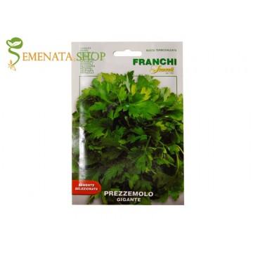 Семена на магданоз Неаполитански гигант - Изключително ароматен с едри листа