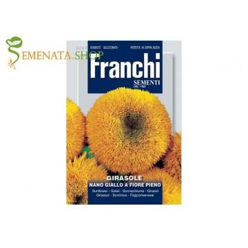 Семена на Слънчоглед жълт кичест