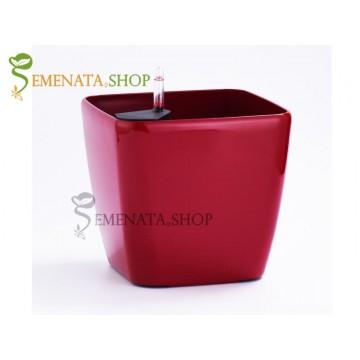 Изчистена саксия с напоителна система в цвят червен - 36.5/36.5/H35.5 см