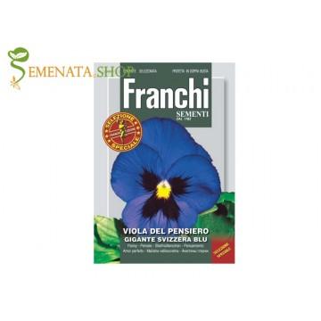 Семена на Виола Синя - Теменужка гигантска швейцарска с нежно син цвят