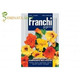 Семена на увивна латинка микс - Франчи