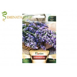 Семена на ароматната билка Лавандула - Lavandula officinalis