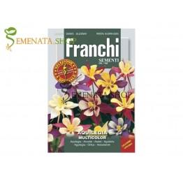 Семена на Кандилка микс (Аквилегия) - микс от страхотни цветове