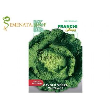 Професионални семена на савойско зеле Mantovano