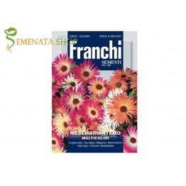 Семена на Доротеантус (Месембриантемум ,Обедно цвете, Мезембриантемум) - Dorotheanthus criniflorum