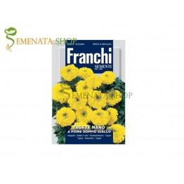 Семена на нисък жълт Тагетес с двоен цвят