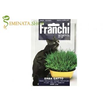 Семена на трева за котки