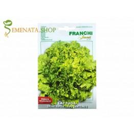 Семена на зелена салата тип Джентелина (Гентелина, Джентилина) сорт Гранд Рапид