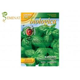 Био семена на босилек Италиански класически - силно ароматен сорт