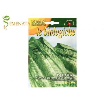 Био семена на маруля Светла градинска - Bionda Degli Ortolani