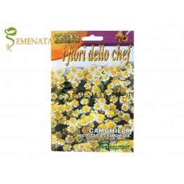 Семена на Лайка с ядливи цветове (Matricaria chamomilla)