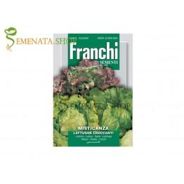 Семена на Микс от хрупкави салати Франчи