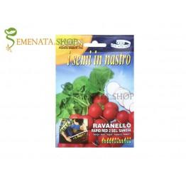 Семена на лента на червени Репички Рапид Ред 2 (селекция Sanova)