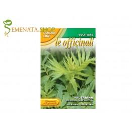 Семена на Валериана (Лечебна Дилянка, Котешка билка) - (Valleriana officinalis)