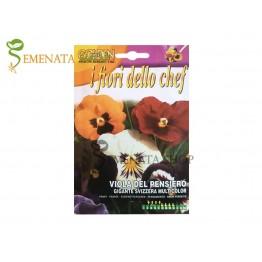 Семена на Теменужки с ядливи цветове - гигантски Швейцарски микс за украси на ястия