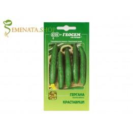 Сортови семена на краставици Гергана - Геосемселект