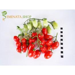 Семена на домати Аля ИЗК Марица - чери с приятен вкус и висок добив