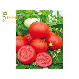 Семена на домати Амапола F1 (Amapola F1)