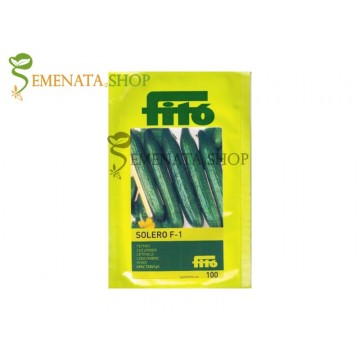 Семена на Краставици Солеро F1 - Solero F1 Fito