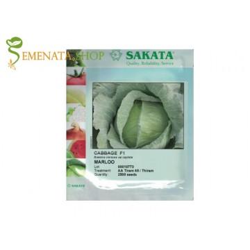 Семена на зеле Марлу F1 (Marloo F1) с глави 3 - 5 кг - перфектно за кисело зеле и свеж пазар