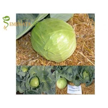 Оригинални семена на зеле Монру F1 (Monroo F1) глави 2,5 - 3 кг - перфектен за свежа консумация и вериги супермаркети (ранно и късно есенно)