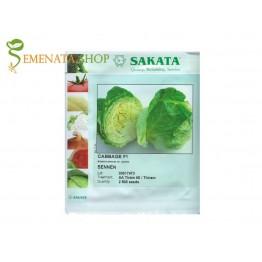 Професионални семена на зеле Сенен F1 (Sennen F1) глави 1,2 - 1,5 кг - перфектен вкус, за предзимно отглеждане