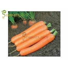 Професионални семена на моркови Йолана F1