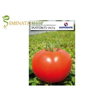 Семена на домати Фантом F1 - супер устойчиви на транспорт и съхранение със страхотен вкус