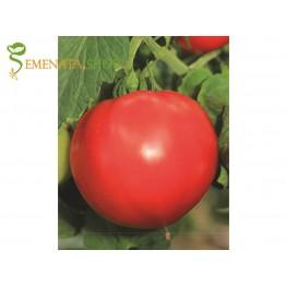 Семена на домати Маратон F1 - един от най-известните сръбски сортове