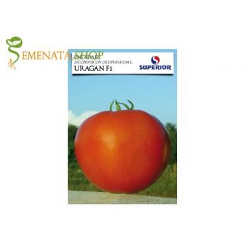Семена на домати Ураган F1 - супер родовит и издръжлив на транспорт с отличен вкус