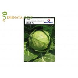 Професионални семена на зеле Адут F1 - Супер ранно с висок добив от Супериор (глави до 2 кг)