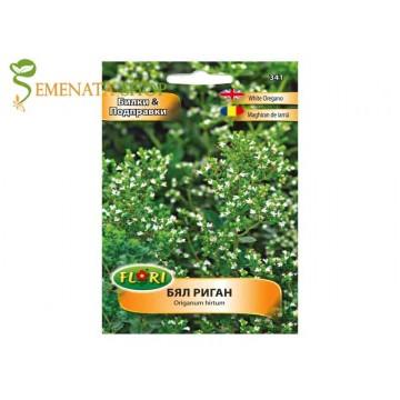 Семена на бял Риган (гръцки Риган) - изключително наситен аромат