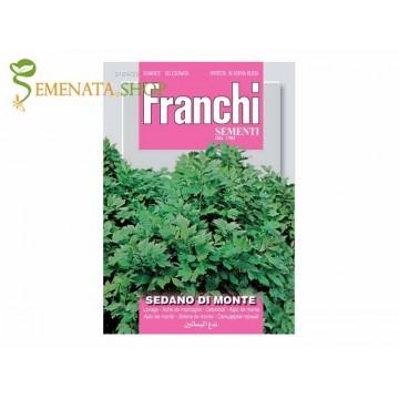 Семена на Девисил (Levisticum officinale, Девесил, Лющян) - един страхотен аромат