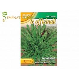 Италиански семена на Глухарче - Taraxacum officinale - растение с изключителна полезност