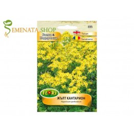 Жълт кантарион - семена от една лечебна билка (Hypericum perforatum)