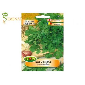 Семена на Кориандър - силно ароматна екзотична подправка от древността (Coriandrum sativum)