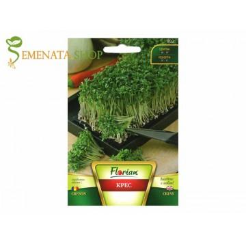 Екзотични семена на Крес (Кресон) - Lepidium sativum за салати и средиземноморски деликатеси