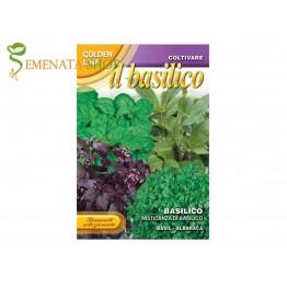 Семена на босилек микс от традиционни италиански ароматни сортове - 12 бр.