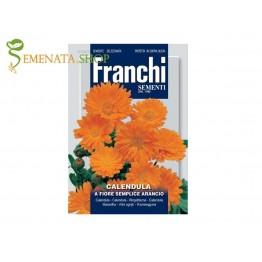 Италиански семена на Невен (Календула) - Calendula officinalis оранжево цвете с много полезни свойства