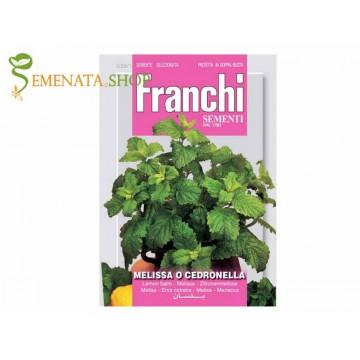Семена на Маточина - Melissa officinalis от Франчи (Franchi)