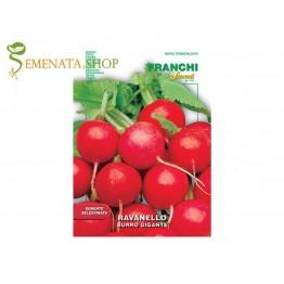Семена на Репички червени едри